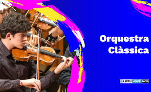 Concert: CLASSICAL ORCHESTRA